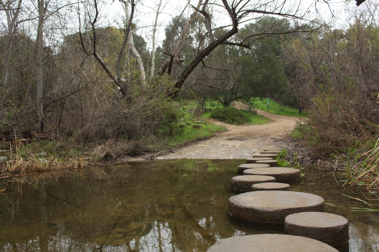 Creeky Steps