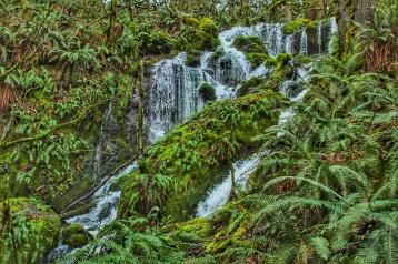 Seattle Waterfall